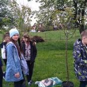 Sadzimy drzewka_1