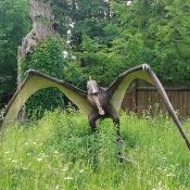 Dzień Dziecka w Krainie Dinozaurów