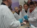 Jak pracują nasze kości i ścięgna? Warsztaty UNI KIDS (13.10.2015)