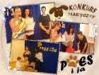 2013-PIES-I-JA