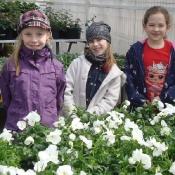 1c wśród kwiatów_10