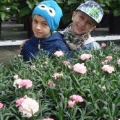 1c wśród kwiatów_12