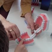 2a u stomatologa_23