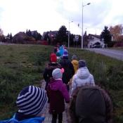 3b na wspólnym spacerze z kolegami z 0b (12.11.2019)