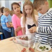 Czas na truskawkowe koktajle! Warsztaty kulinarno-przyrodnicze (25.05.16)