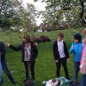 Dbamy o przyrodę - sadzimy drzewka przed szkołą (8.05.2017)