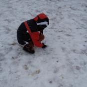 Jak powstaje śnieg?_12