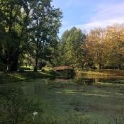 Klasy 0 w Ogrodzie Botanicznym (09.10.2020)