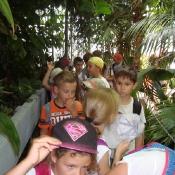 Klasy 2 w Ogrodzie Botanicznym_23
