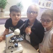 Mikroskopy_7