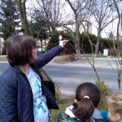 Obserwujemy wiosenną przyrodę_6