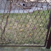 Na tropie wiosny_8