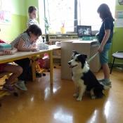 Lekcja z psem_2