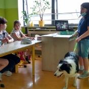 Lekcja z psem_5