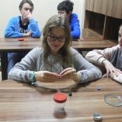 Magnetyzm, magnez i magnes… - warsztaty w klasie szóstej
