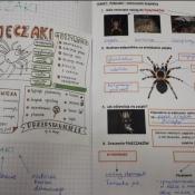 Najpiękniejsze zeszyty z biologii, geografii i przyrody