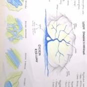 Notatki wizualne klas 7 i 8 z geografii