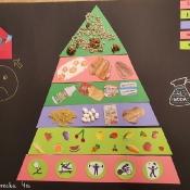 Piramida zdrowia (26.02.2021)