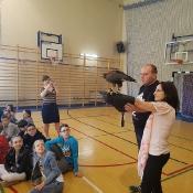 Ptaki drapieżne_6