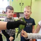 Warsztaty z papugą w Chrobrym - Klasy I A i I B - 2019 r._11