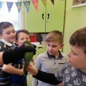 Warsztaty z papugą w Chrobrym - Klasy I A i I B - 2019 r._12