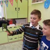 Warsztaty z papugą w Chrobrym - Klasy I A i I B - 2019 r._14