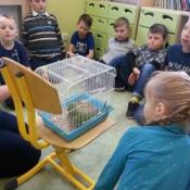 Warsztaty z papugą w Chrobrym - Klasy I A i I B - 2019 r._1