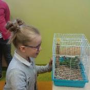 Warsztaty z papugą w Chrobrym - Klasy I A i I B - 2019 r.