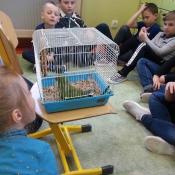 Warsztaty z papugą w Chrobrym - Klasy I A i I B - 2019 r._2