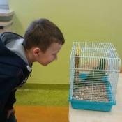 Warsztaty z papugą w Chrobrym - Klasy I A i I B - 2019 r._3