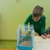 Warsztaty z papugą w Chrobrym - Klasy I A i I B - 2019 r._4