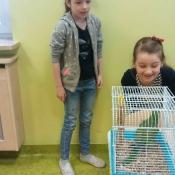Warsztaty z papugą w Chrobrym - Klasy I A i I B - 2019 r._5