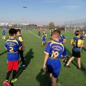 Złoto w rugby-tag_5