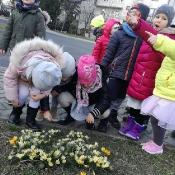 Żabki i Biedronki na tropie wiosny…_2