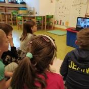 Żabki oglądają akademię z okazji Święta Niepodległości
