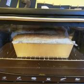 Żabki pieką chleb