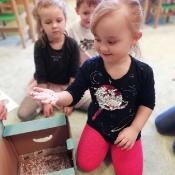 Żabki uczą się jak unikać wirusów i bakterii