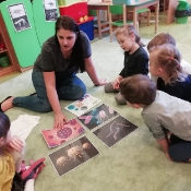 Żabki uczą się jak unikać wirusów i bakterii_1