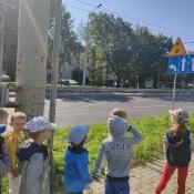 Biedronki poznają zasady ruchu drogowego_3