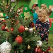 Bożonarodzeniowy projekt Biedronek