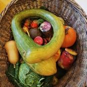 Co w jesiennym ogrodzie piszczy, czyli ogrodnik w przedszkolu_9