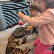 Dzień kota u Rybek_14