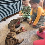 Dzień kota u Rybek_15