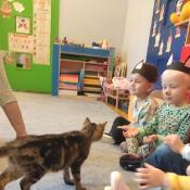 Dzień kota u Rybek_2