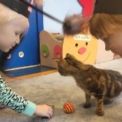 Dzień kota u Rybek_8
