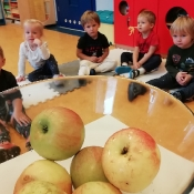 Jabłkowy projekt Rybek_13