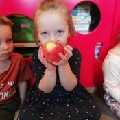Jabłkowy projekt Rybek_2