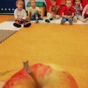 Jabłkowy projekt Rybek_9