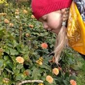 Jesienny space Motylków i Pszczółek_21