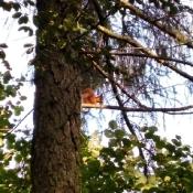 Jesienny space Motylków i Pszczółek_24